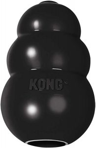 Kong Extreme Dog Toy for Power Chewers