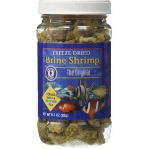 Freeze Dried Brine from San Francisco Bay (Suitable for Fresh and Saltwater Fish animals)