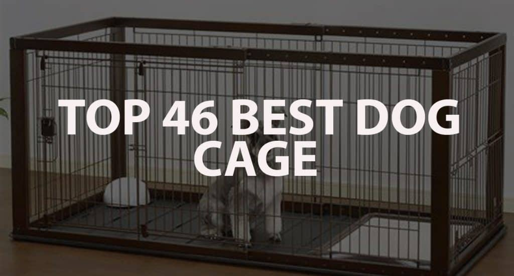Top 46 Best Dog Cage